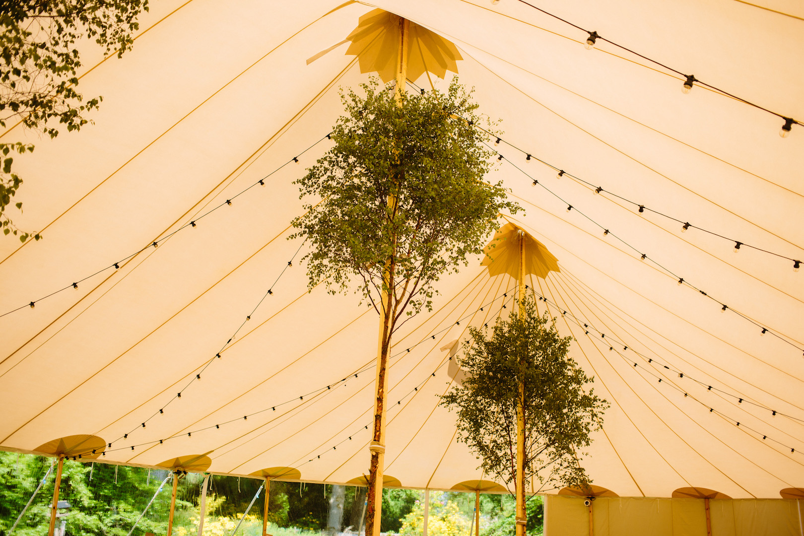 Alice & Alex's PapaKåta Sperry Wedding at Dunsinnan House, Scotland- Festoon Lights by Eilidh Sutherland Photography