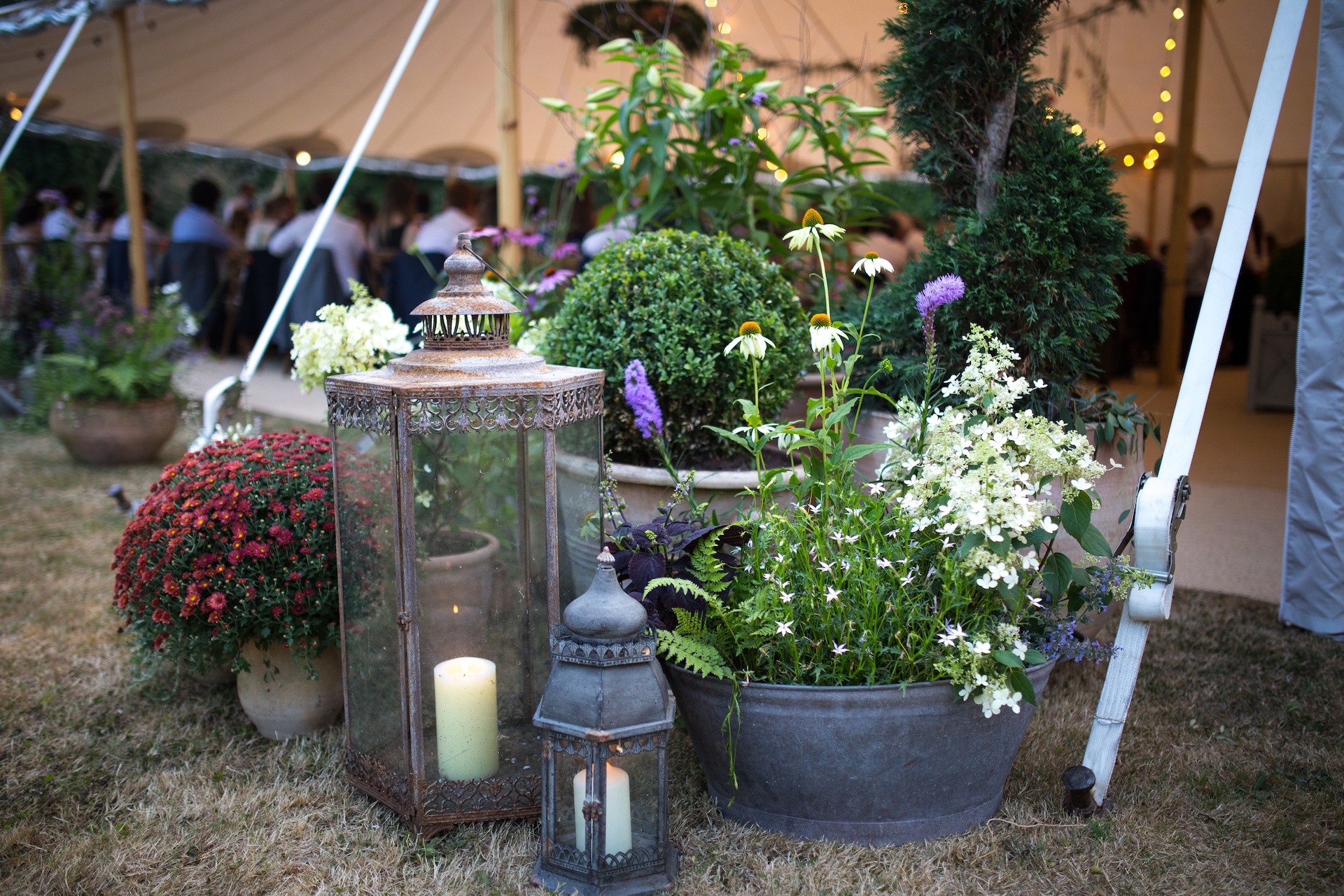 PapaKåta Sperry Tent Wedding at Ella & George's family home in Sussex- Floral details by Tigers to Lilies